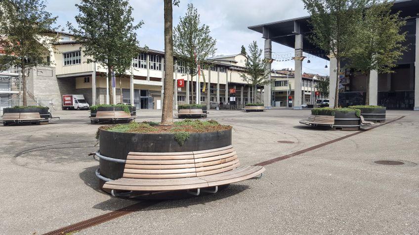 cityGREEN MAMMUT Pflanztrog mit Rundbank bei der Olma
