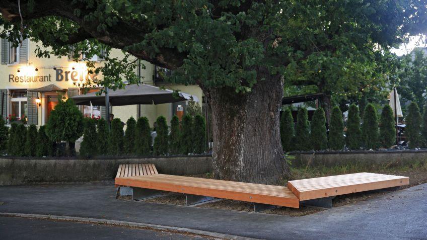 Die grossen Holzquerschnitte benötigen stattliche Bäume. Da passte die heimische Douglasie perfekt.