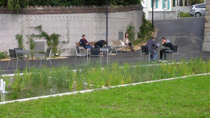 Die  Produkte  von  BURRI  im  natürlichen  Kontext  des  Zuger  Stadtgartens