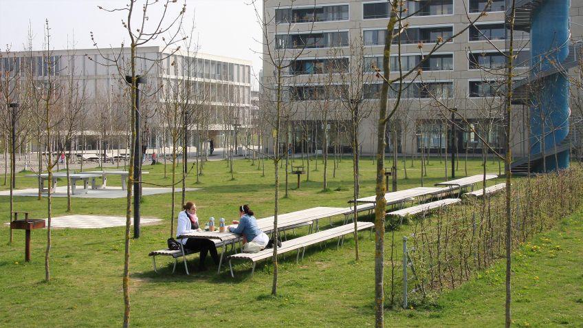Landi  Tische  aus  Lärchenholz  in  kombinierter  Anordnung  in  Wohnanlage.