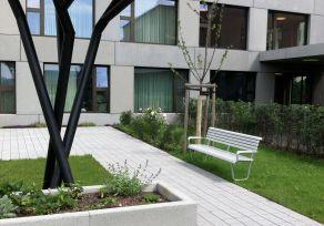 Auch  gestrichenes  Tannenholz  passt  gut  bei  der  Landi  Seniorenbank